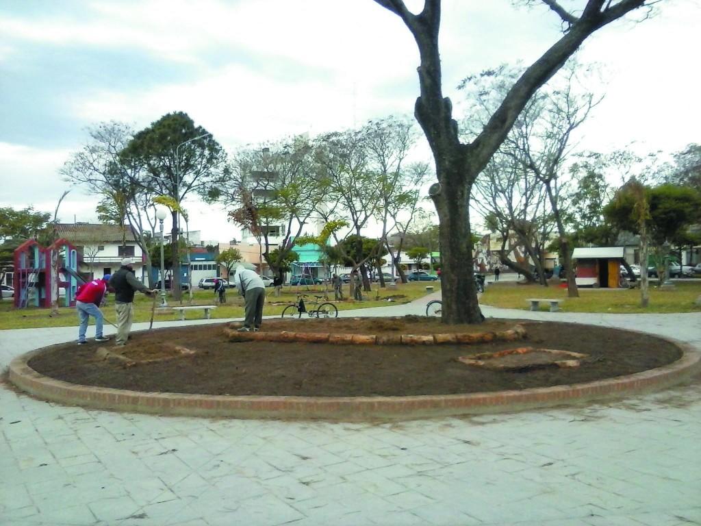 arreglos-plaza-libertad