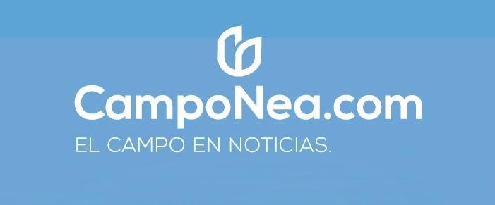 Campo Nea