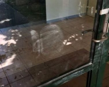 La policía descubrió las huellas en una puerta de vidiro.
