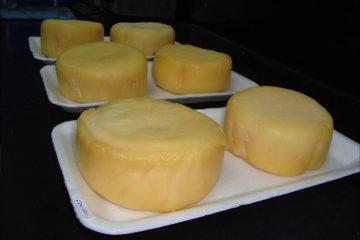 quesos-artesanales