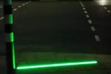 semaforo en el suelo holanda