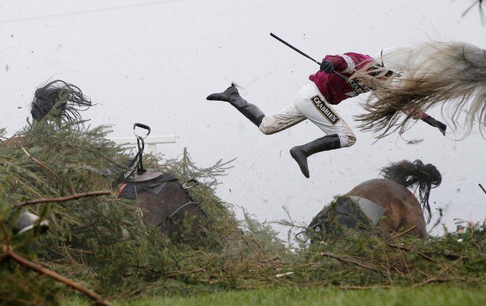 La instantánea ganadora del primer premio en la categoría de Deporte, del fotógrafo del diario The Guardian Tom Jerkins. La imagen muestra a la jinete Nina Carnberry por los aires tras caer de su caballo 'Sir Des Champs' durante la competición de hípica Grand National Meeting, el 9 de abril de 2016, en Liverpool (Reino Unido).
