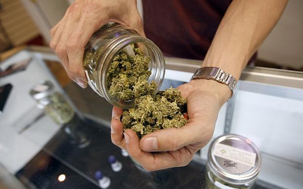 Resultado de imagen para Ventas de marihuana en farmacia de Uruguay