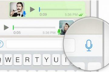 traduce los audios a textos